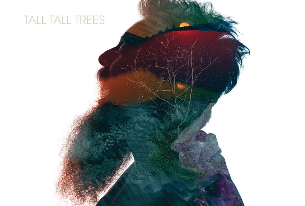Tall Tall Trees – August 4